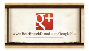 Bearbranch-GooglePlus-Card-2
